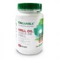 Krill Oil (ulei de crevete Krill) - pentru sistemul cardiovascular si durerile reumatice