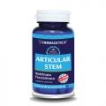 Articular stem (60 cps.)– mentine sanatatea articulatiilor