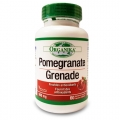 Acid elagic (Pomegranate) - util in combaterea cancerului, rol antioxidant