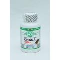 Chaga (Ciaga) C-Max - antioxidant, antitumoral, antibacterian, anticancerigen, antialergic
