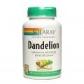 Dandelion Functionarea sistemului digestiv si hepato-biliar
