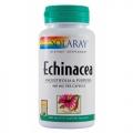 ECHINACEA Formula complexa pe baza de echinacea pentru imbunatatirea sistemului imunitar