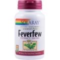 Feverfew - Pentru reducerea frecventei, severitatii si duratei migrenelor