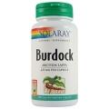 Burdock Formula pentru sanatatea pielii si a parului