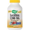 Lecithin 1200 MG Functionarea normala a sistemului nervos central