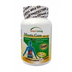 Mastic Gum AFECTIUNI ALE TRACTULUI DIGESTIV